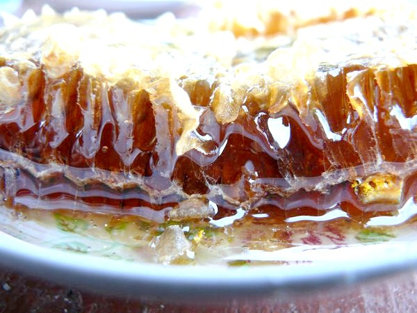 Фото - Кипрейный мед: полезные свойства и противопоказания(состав, полезные свойства, противопоказания)
