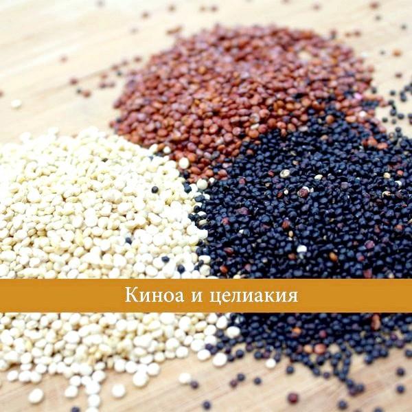 Фото - В каких продуктах содержится глютен