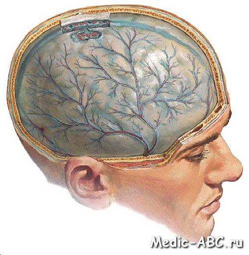 Что такое энцефалопатия головного мозга?