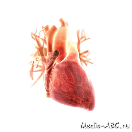 Как избавиться от боли в сердце