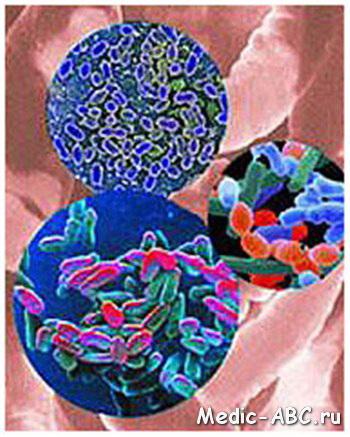 грибы у человека симптомы