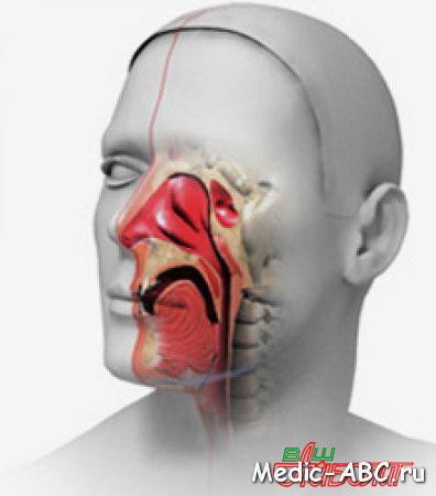 Менингоэнцефалит - симптомы, диагностика, лечение, последствия